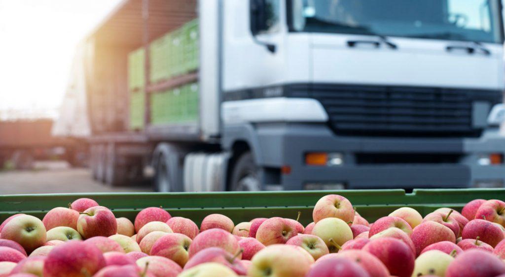 Claves de la logística y el almacenaje en el transporte de frutas y hortalizas